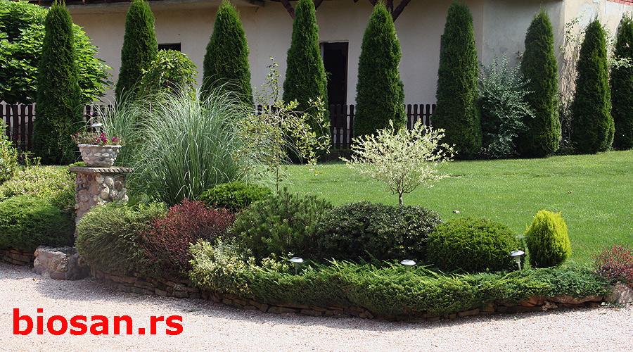 Биљке у низу